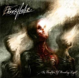 "EBONYLAKE -""In Swathes Of Brooding Light"" CD"