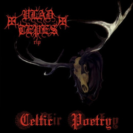 "VLAD TEPES - ""Celtic poetry"" CD"